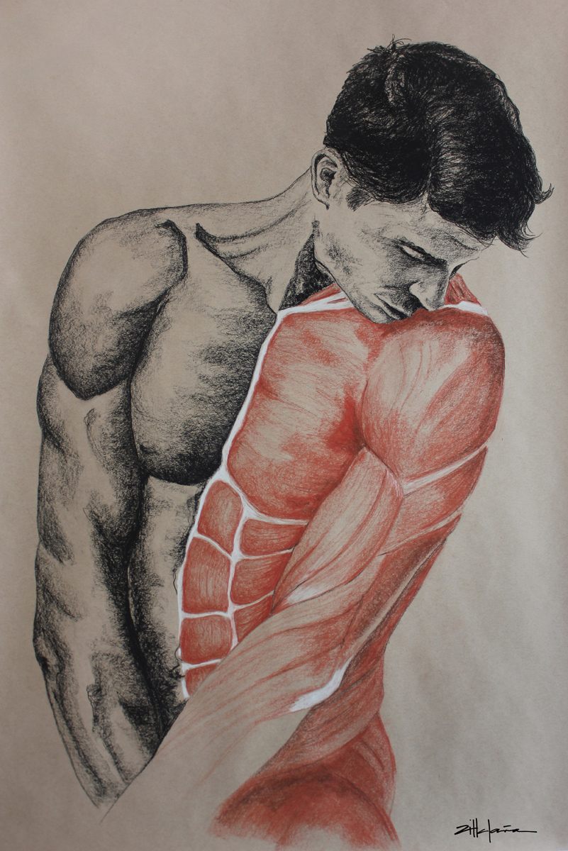 "Original Art, Nude Male Figure Art - Drawing / Illustration Charcoal - Graphite ""SHY GUY"" by Marcy Ann Villafaña"